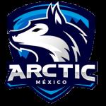 Artic Gamming México