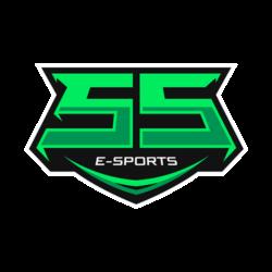 ss-esports-250x250