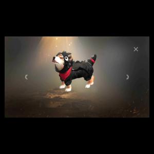 Habilidades dos Pet's do Free Fire 10